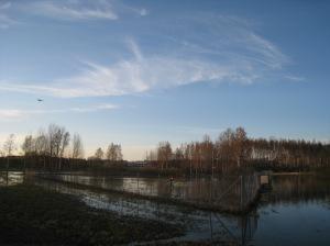 Saulin virkaanastujaiset 1.3.2012 - Korkeasaari 1.7.2012 240